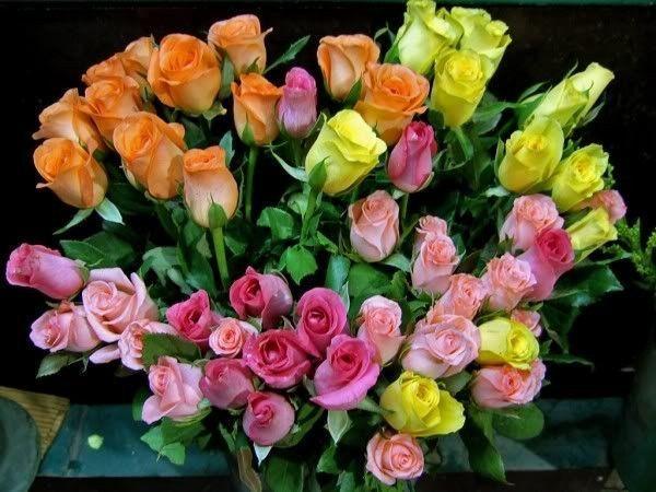 Très joli  bouquet de belles roses