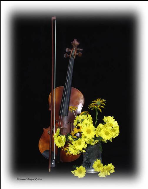Tube violon et fleur